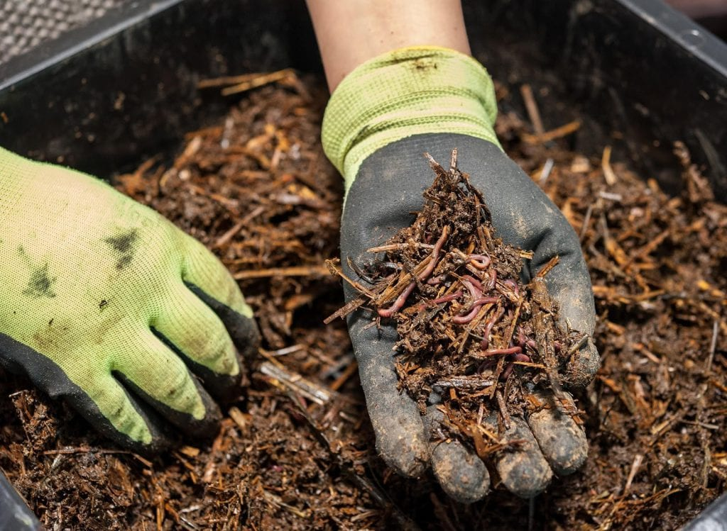 A worm farm is a great option for apartment-dwellers and those who have small gardens.