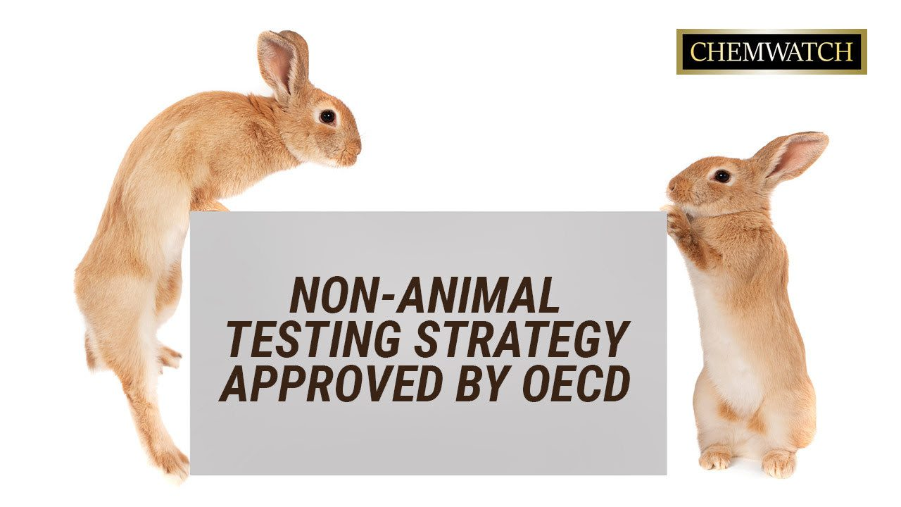 Non-animal testing strategy approved by OECD